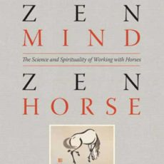 Zen Mind Zen Horse Review